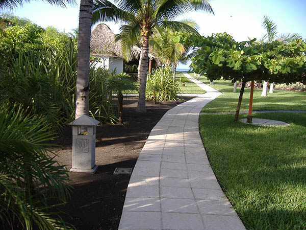 Looppad voor mijn ochtendloopje - Dos Mundos Pacific Resort